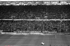 1.Fc Köln Fc Ingolstadt