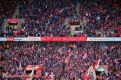 1.FC Köln - SV Darmstadt 98